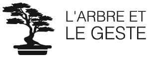 Atelier Val de Saire Bonsai oct/nov 2020 |